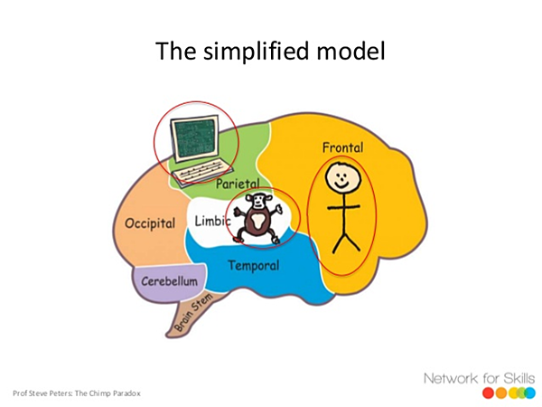 The Chimp Paradox model of the brain.